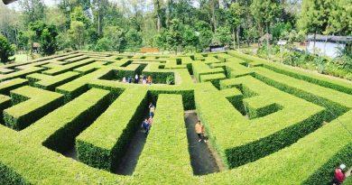 Taman Labirin Batu Malang